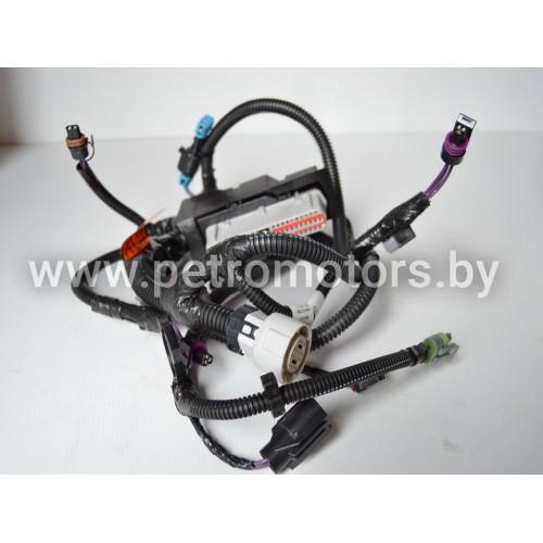 Жгут электропроводки двигателя